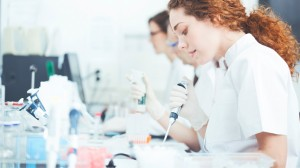 Lab technicians researching wound healing